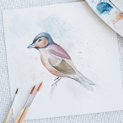 Watercolor_projects_Willowvisuals-6